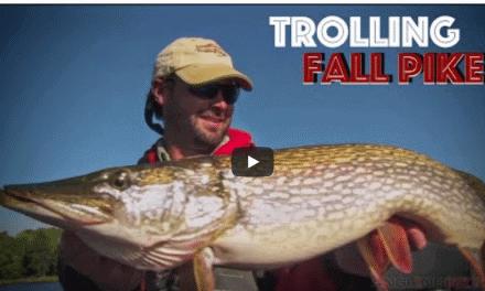 Crankbait Trolling Tactics for Trophy Fall Pike