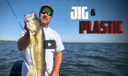 Jigs & Softbaits for Fall Walleyes and Smallmouths