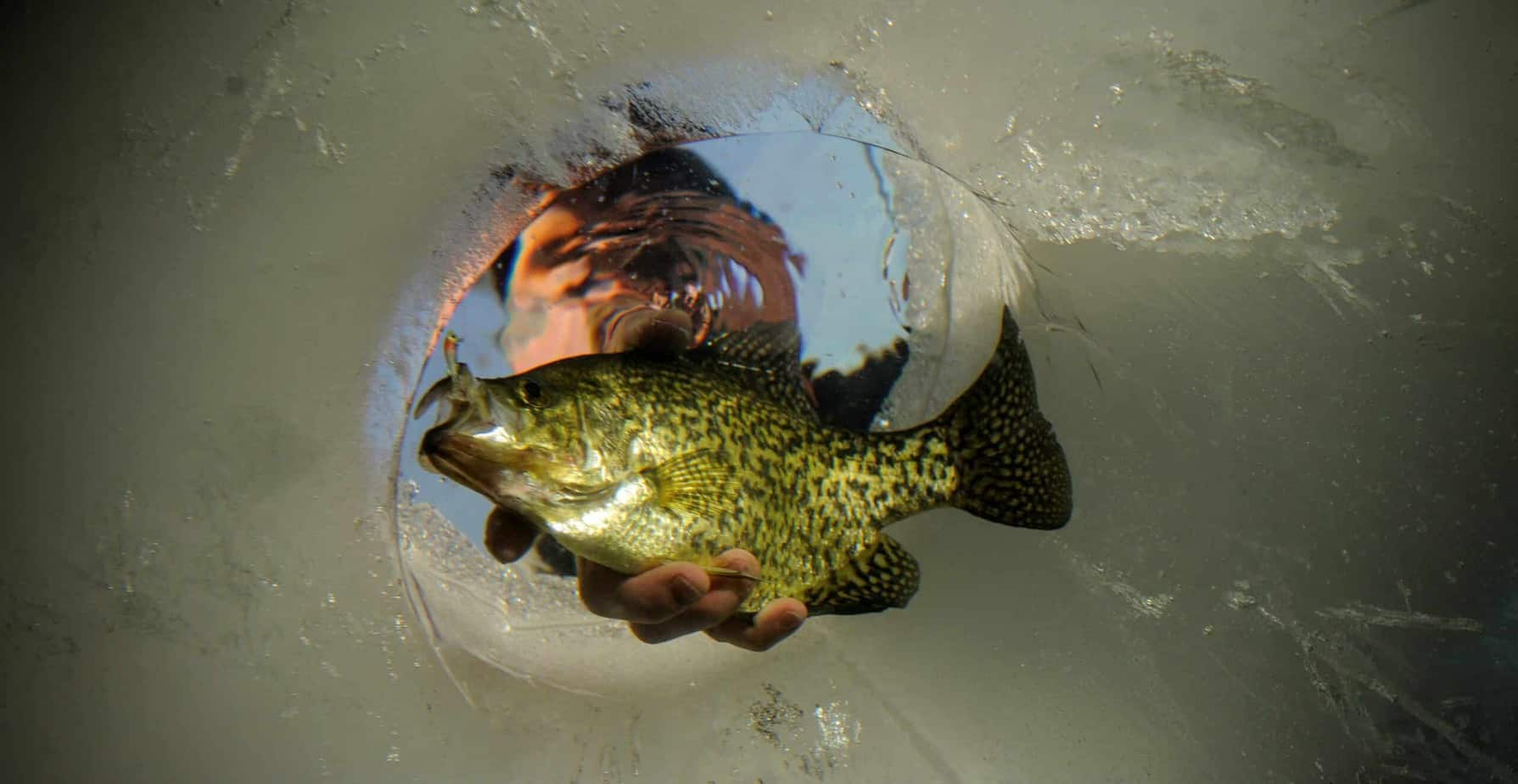 Ask the Pros: What's the Key to Finding Late Ice Panfish?