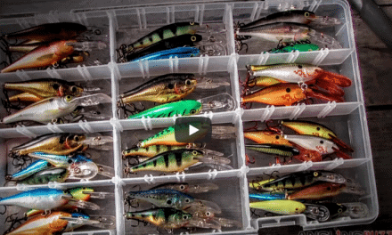 Flat-Sided Crankbaits for Cold-Water Bass