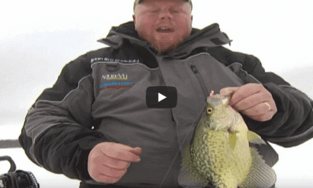 Tipping Crappie Jigs