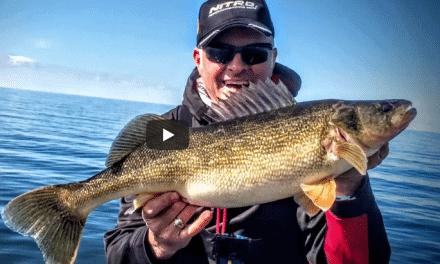 Jigging Prespawn Great Lakes Walleyes