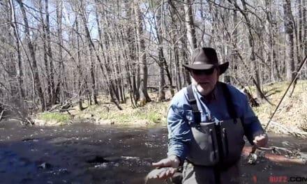 Minnesota Buzz Bite Flyfishing Report – Mickey Johnson