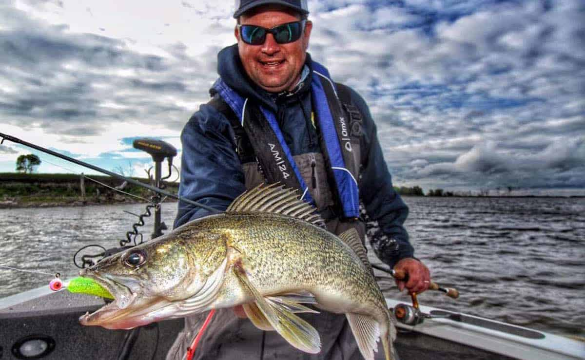 Summer Walleyes - Jason Mitchell