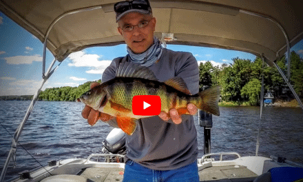 Using Electronics to Catch Fish During the Mayfly Hatch