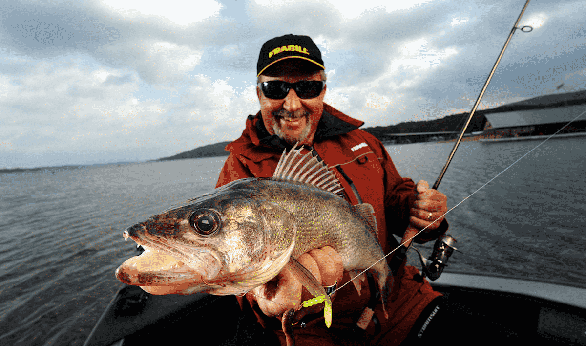 Summer Walleyes - Tom Neustrom