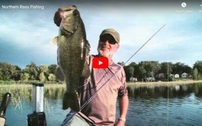 Northern Bass Fishing – Largemouth vs Smallmouth