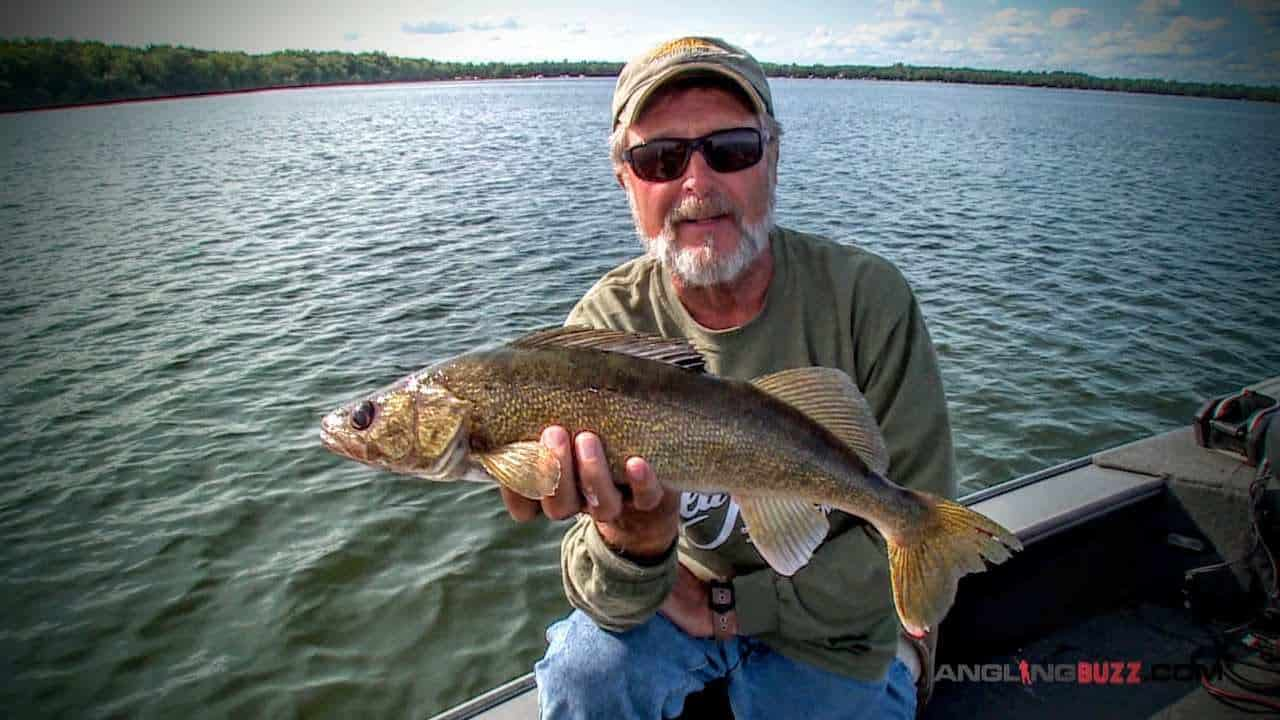 The Power of Rip Jigging Reaction Baits for Walleyes