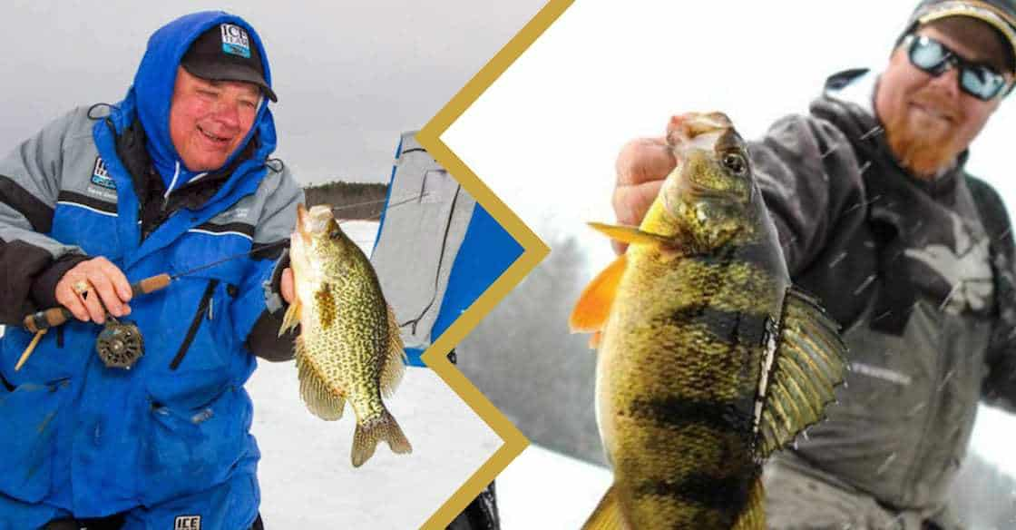the Best Panfish Line Trrough the Ice
