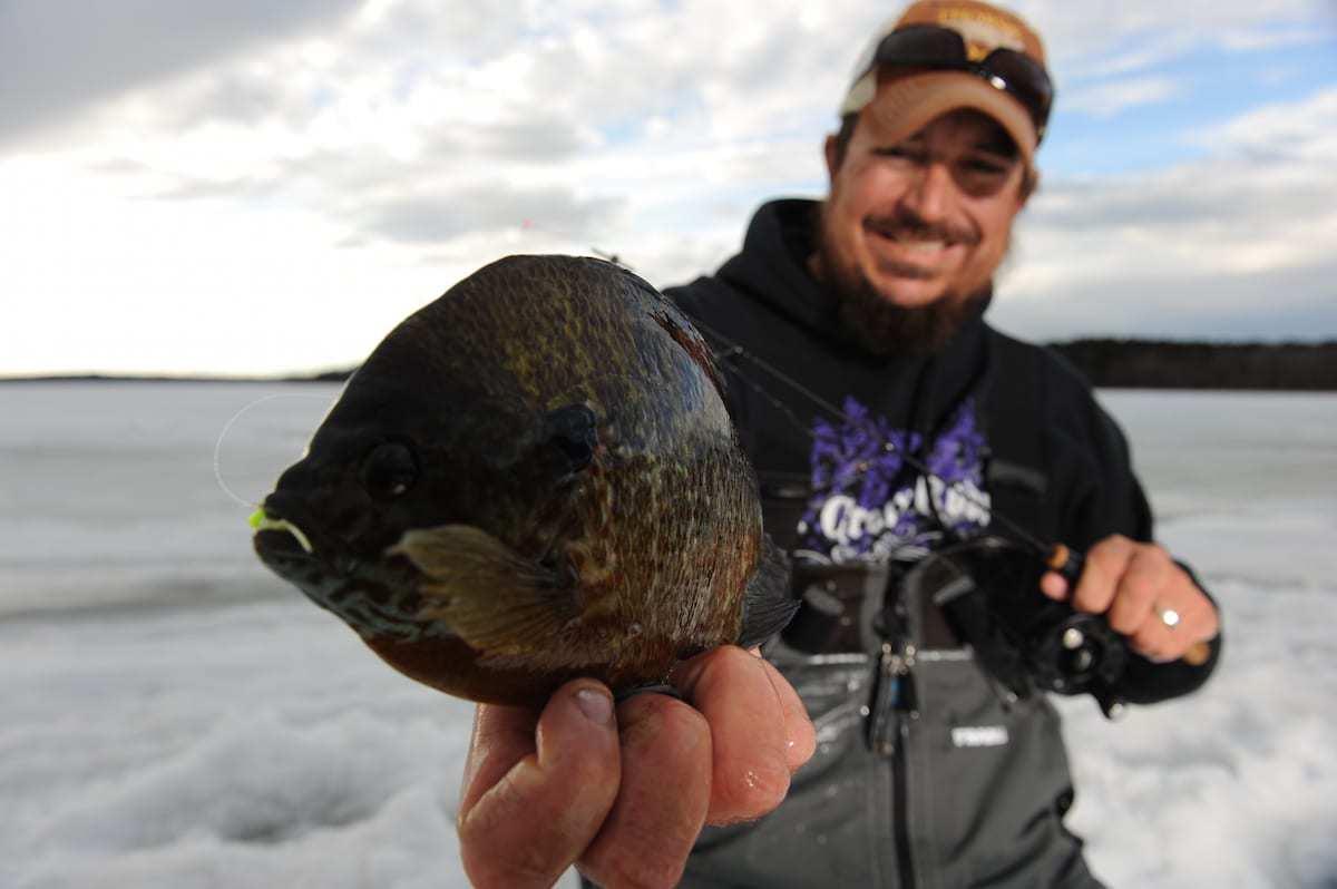 Jim Edlund Panfish Ice Fishing Line