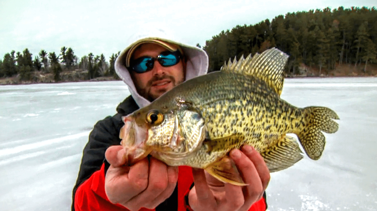 Fish Middepth Basins for Crappies On Ice