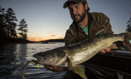5 Presentations for Early Season Walleye from Northland