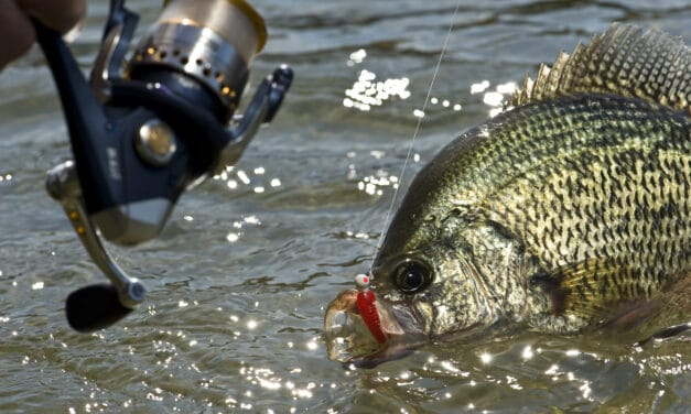 9 BEST Crappie Lakes in the Upper Midwest