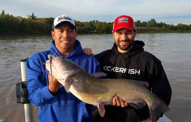 red_river_catfish