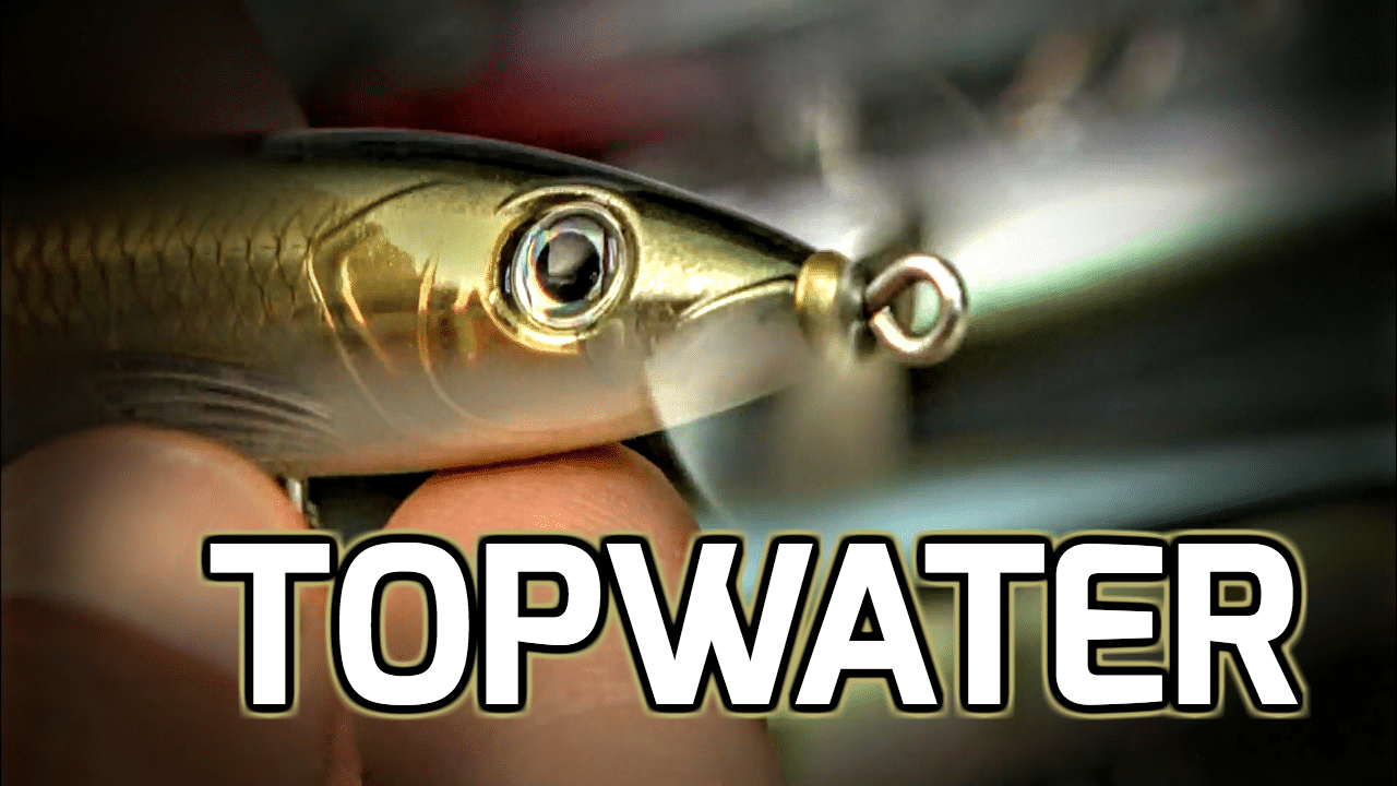 4 Topwater Lures — When They Each Shine