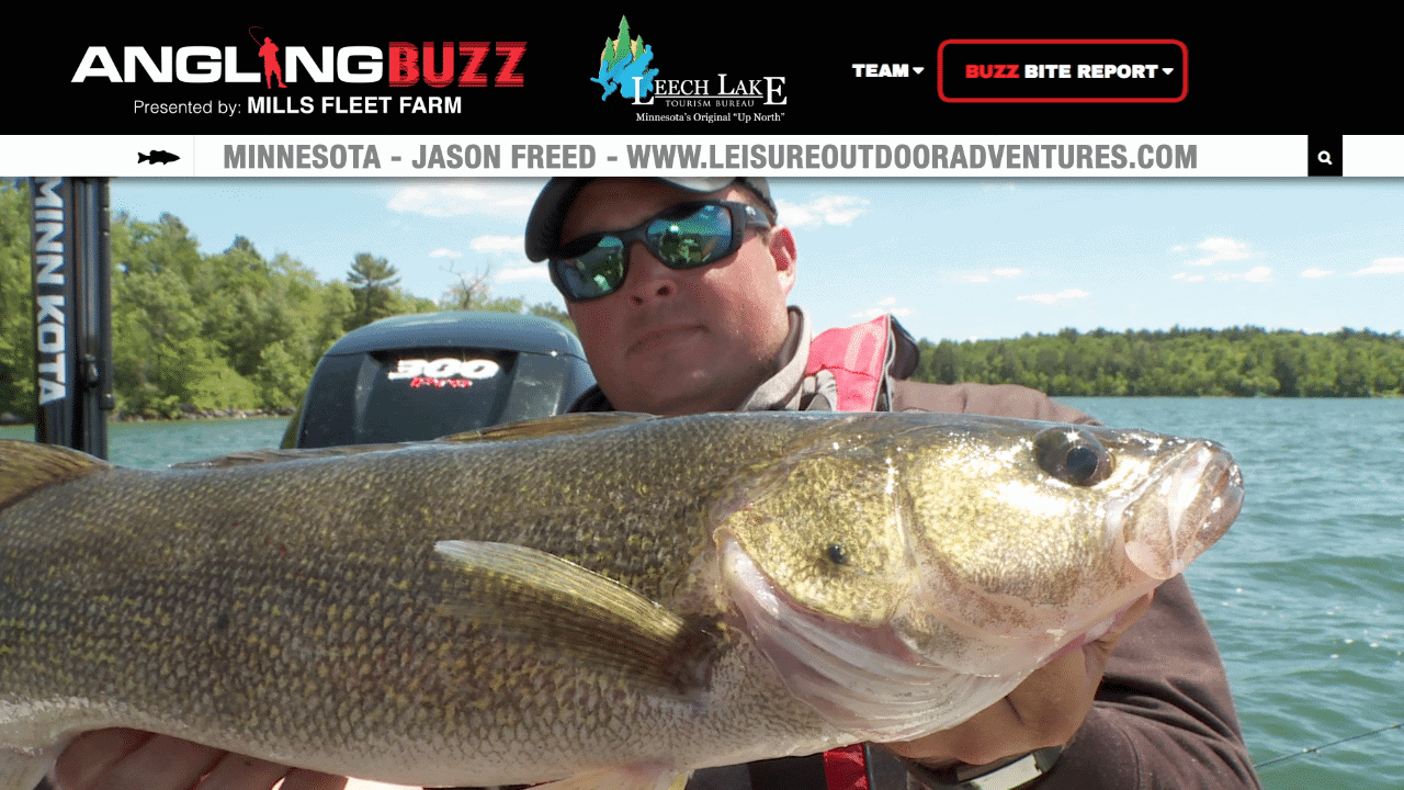 Leech Lake (MN) Fishing Report – Jason Freed