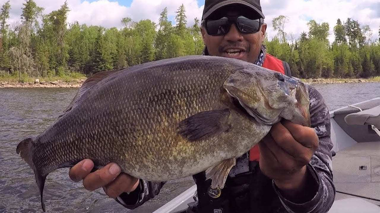 Unreal Summer Bass & Walleye Fishing at Q Lake Lodge – Manitoba Hot Bite