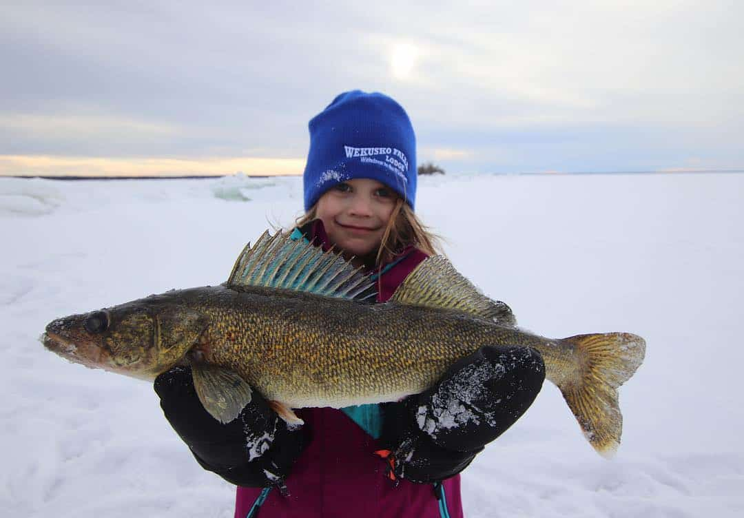 Northern Manitoba Fishing Report – Bryan Bogdan