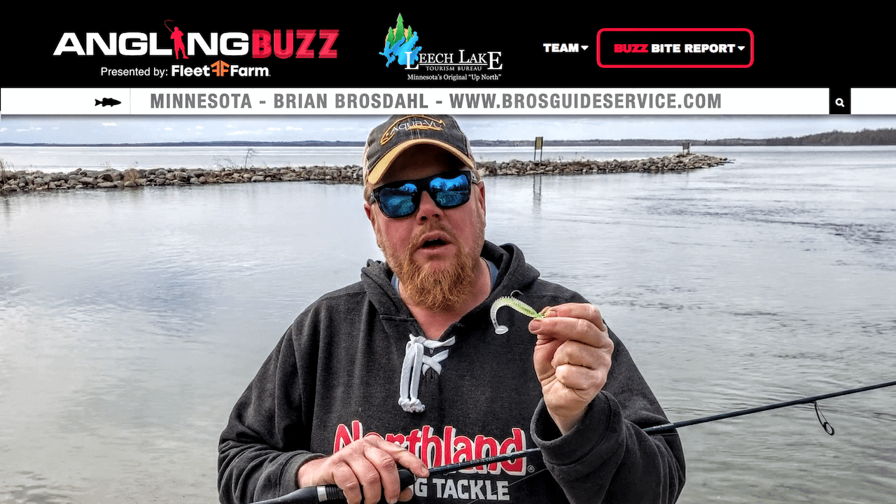 Leech Lake (MN) Fishing Report – Brian Brosdahl