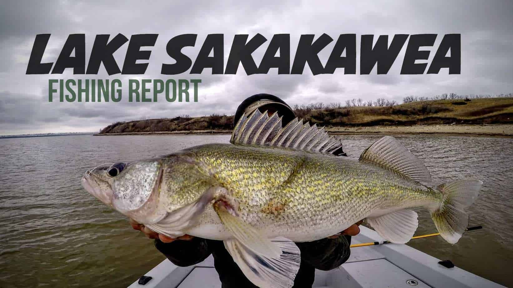 Lake Sakakawea (ND) Fishing Report – Josh Johnson