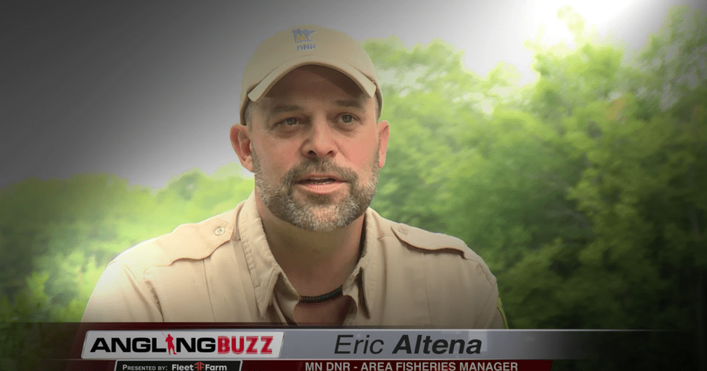 Bluegills Eric Altena