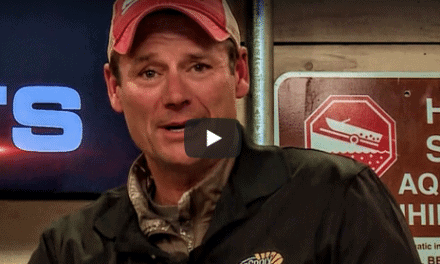 Nestor Falls (ON) Fishing Report – Mike Gate