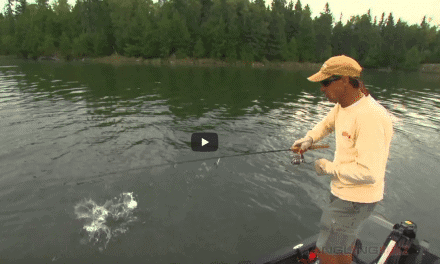 Jigging Subtle Softbaits for Suspended Smallmouth Bass