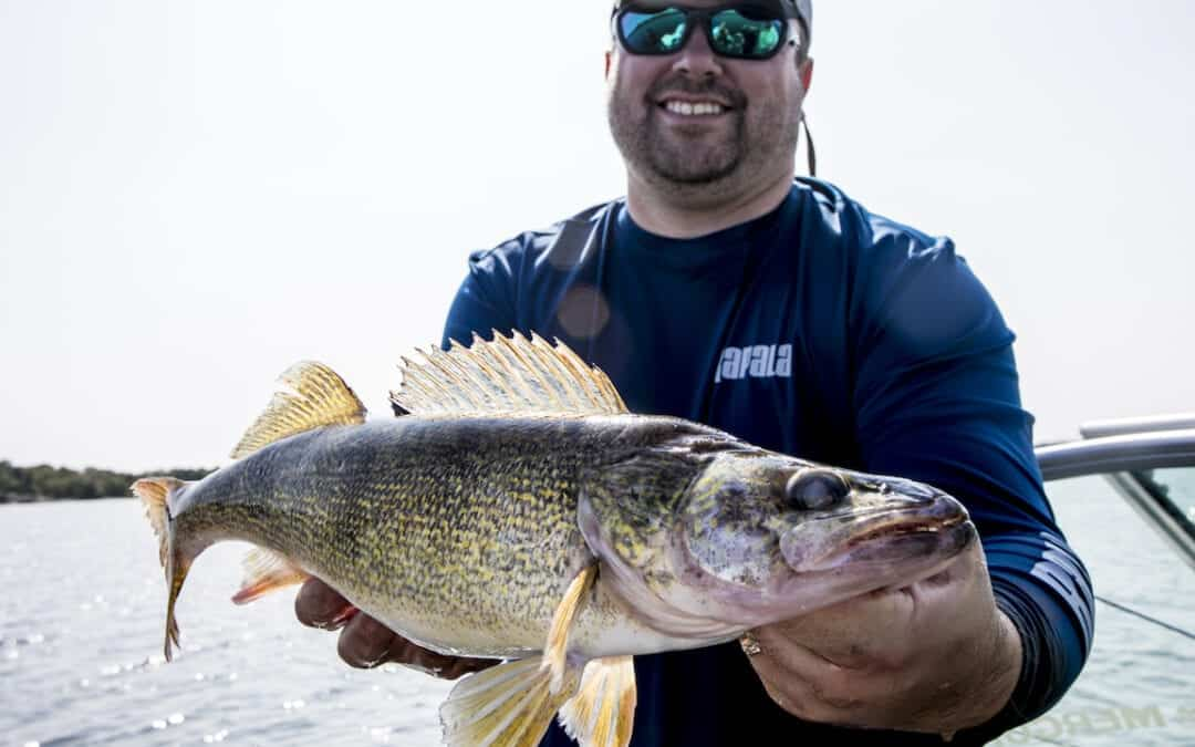 Walleye Lures: When, Where and Why?