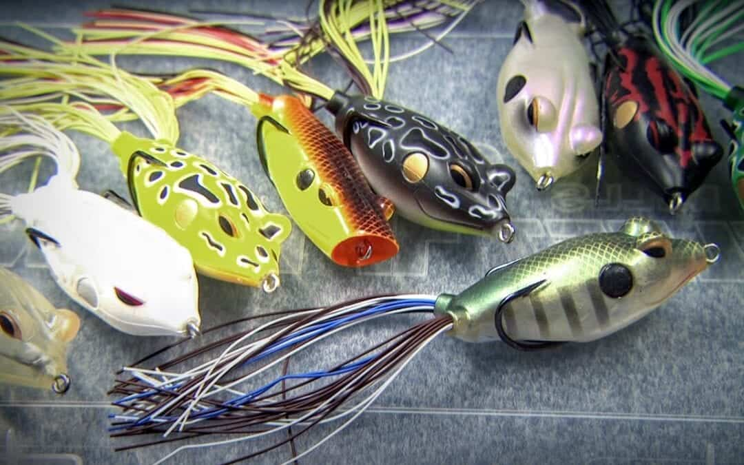 Frog Fishing Bass with Popping & Walking Frogs