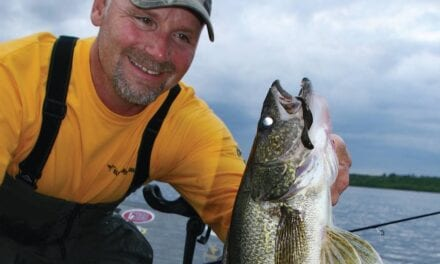 August Walleye Report from Lake Vermilion