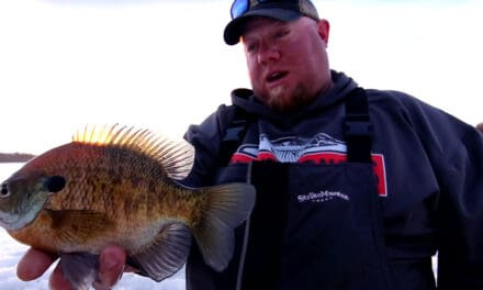 Targeting Big Bluegills