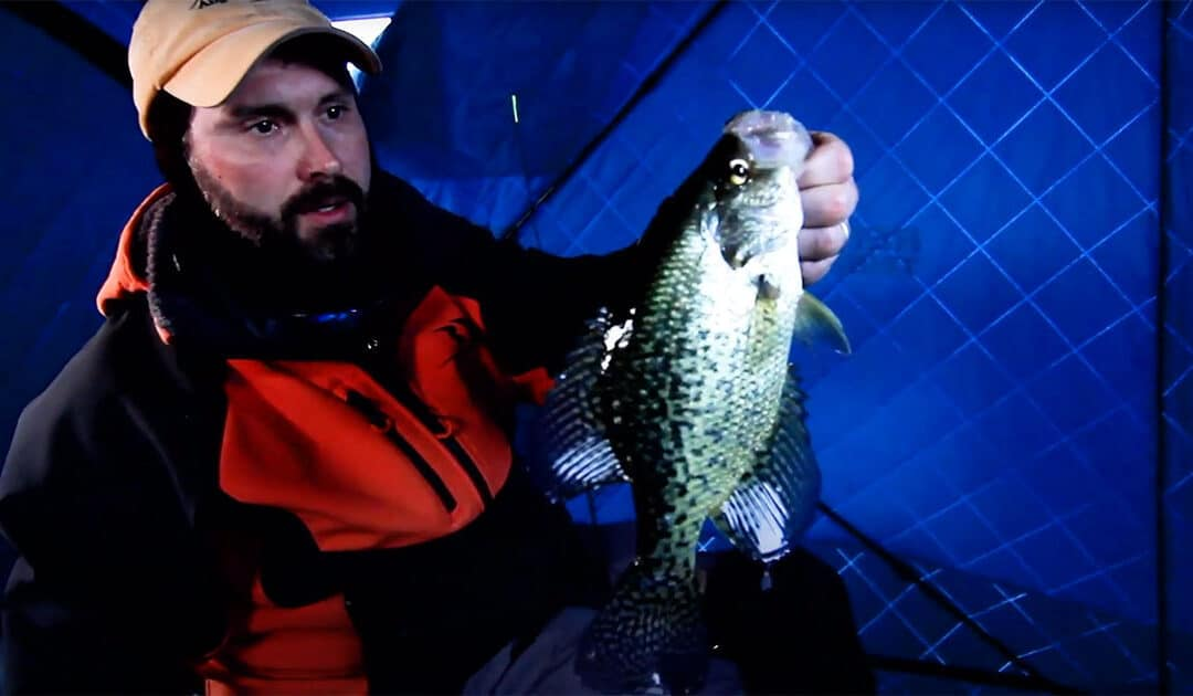 When to Stay Put for Crappies