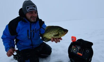 Brainerd Lakes Area Buzz Bite Report 1-25-2021