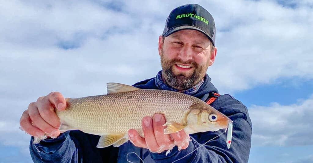 Northern Wsiconsin Whitefish