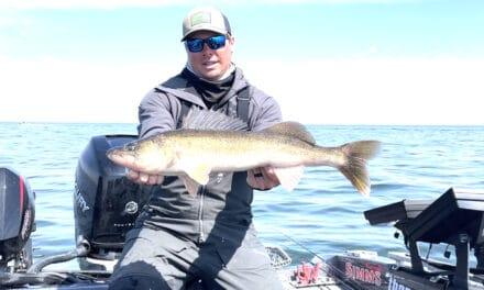 Green Bay Wisconsin Buzz Bite Report 4-5-2021