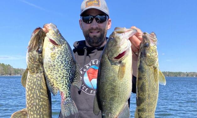 Hayward Wisconsin Buzz Bite Report 4-29-21