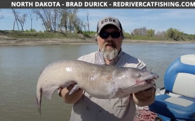Red River Buzz Bite Report 6-15-2021