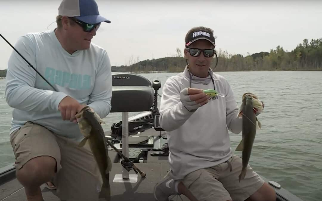 Crankbaits in Weeds for Bass
